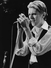David Bowie photographed in 1976.