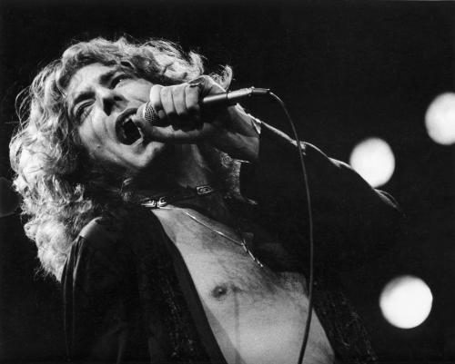 Robert Plant photographed by Janet Macoska in 1977.