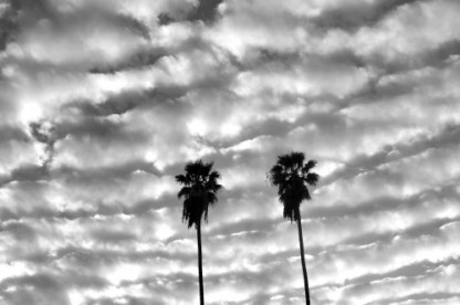 The sky at Venice Beach photographed by Stephen Albanese.