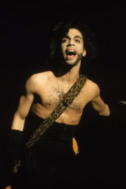 Prince performs in concert