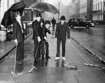 The Small Faces photographed walking reptiles down a London Street